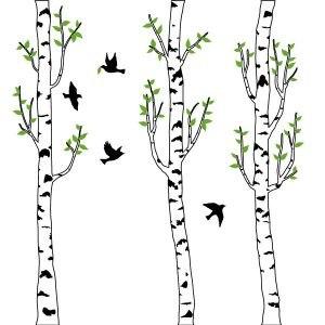 Birke fa falmatrica dekoráció gyerekszoba faltetoválás ajándék ötlet