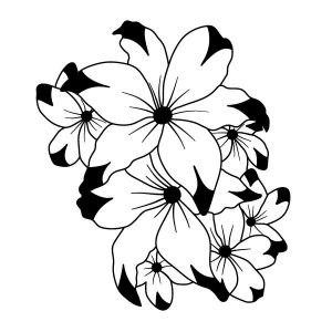 Hana falmatrica dekoráció M211
