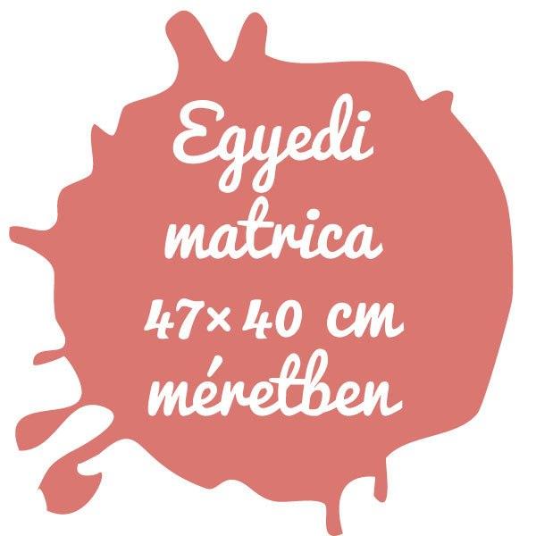 Egyedi matrica tervezése 47×40 cm területen