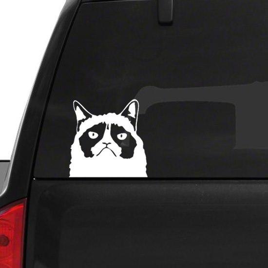 Grumpy cat autóra matrica M712