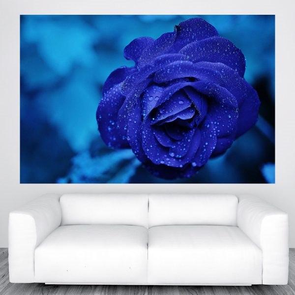 Kék rózsa poszter panoráma óriás olcsó fali kép nyomtatás plakát rendelés