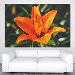 Narancs virágos poszter panoráma óriás olcsó fali kép nyomtatás plakát