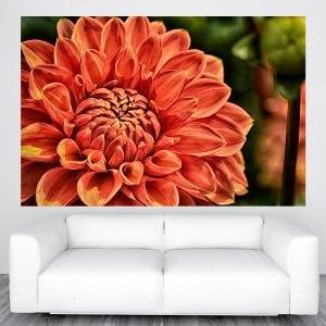Virágos poszter panoráma óriás olcsó fali kép nyomtatás plakát rendelés