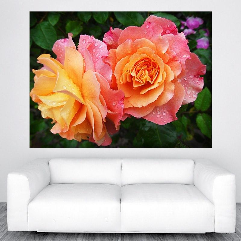Rózsa falikép M417